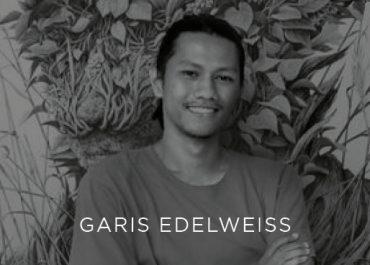 Garis Edelweiss